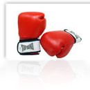 Boxing & Training