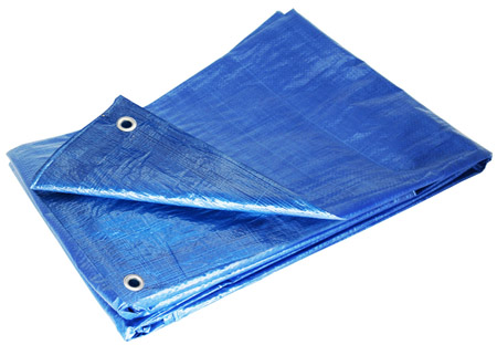 Blue 10 x 12 Tarp